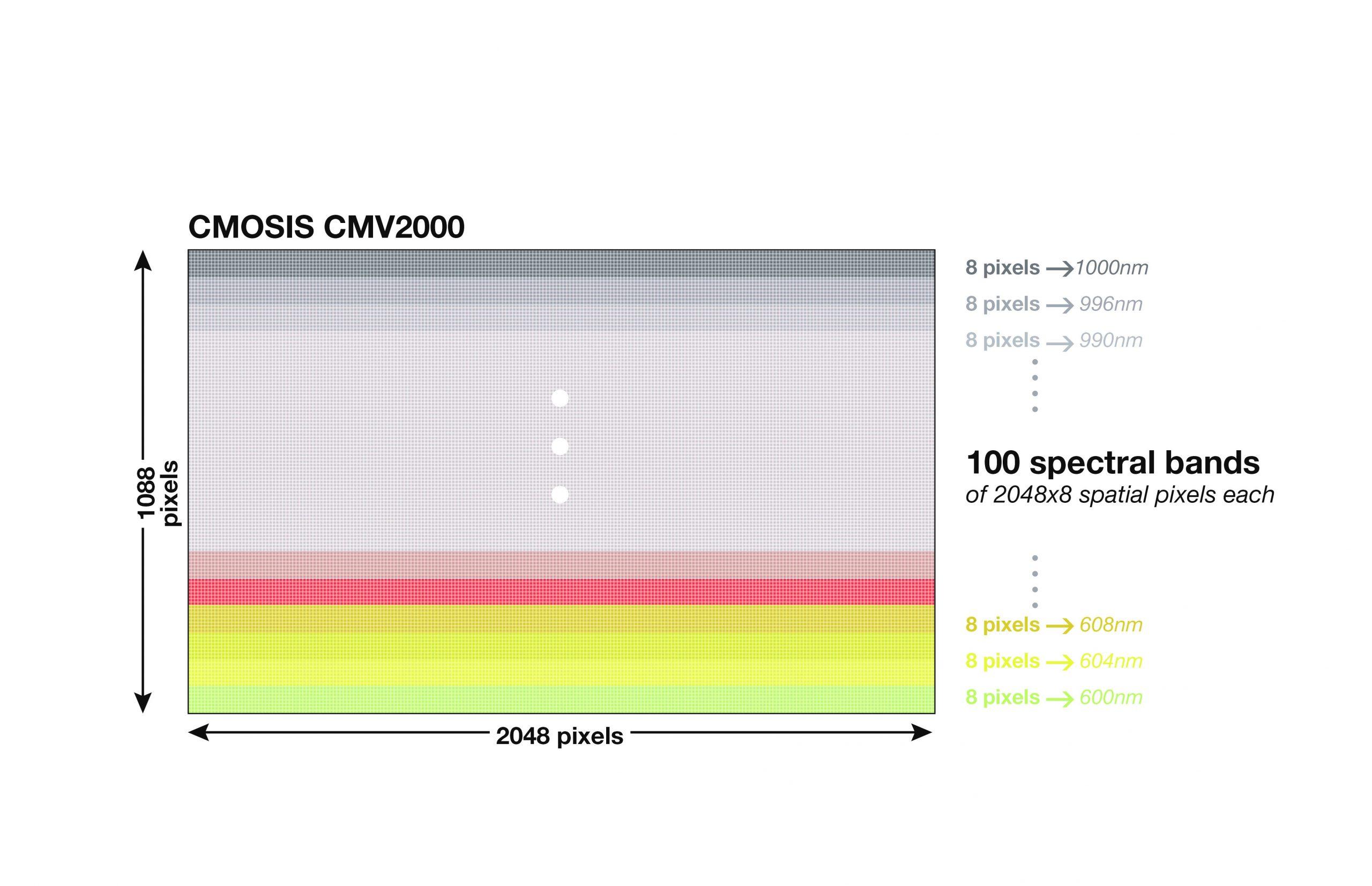Spektralb-nder